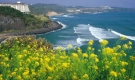 PAKET TOUR KOREA SONATA + JEJU ISLAND 08H By Asiana 30 Dec2013
