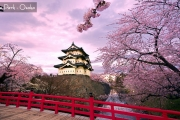 AJ3GA - JAPAN HONSHU SAKURA SAVER 7H/5M  2019: Apr 02, 03, 04 - BY: GARUDA INDONESIA