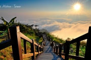 CTDCI - WONDERFUL TAIWAN with ALISHAN STAR 08H - 18, 22, 24 & 26 JUN 2017 BY : CHINA AIRILINES