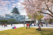 KOREA WINTER SONATA + JEJU ISLAND + BRUNEI TOUR 8D Keberangkatan 02 Jan By BI